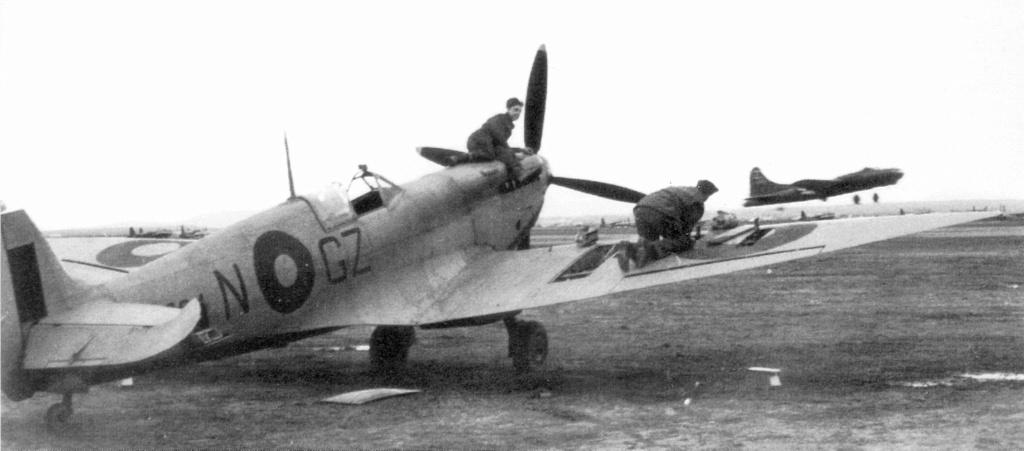 Supermarine Spitfire HF Mk VIII - Eduard - 1/48 46e48210