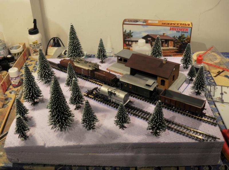 Diorama hivernale - locomotive Crocodile - 1/87 (HO) Dsc_1119