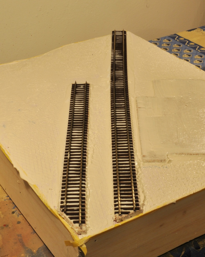 Diorama hivernale - locomotive Crocodile - 1/87 (HO) - Page 2 Dsc_1123