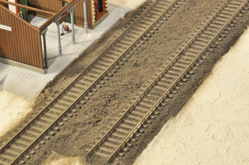 Diorama hivernale - locomotive Crocodile - 1/87 (HO) - Page 2 Dsc_1138