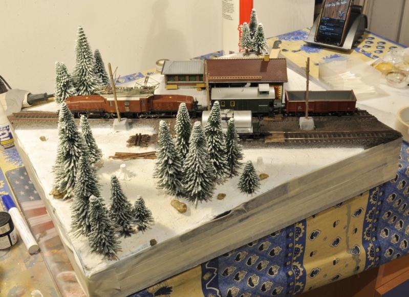 Diorama hivernale - locomotive Crocodile - 1/87 (HO) - Page 2 Dsc_1154