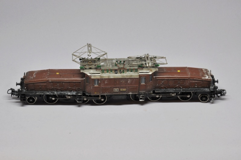 Diorama hivernale - locomotive Crocodile - 1/87 (HO) - Page 2 Dsc_1165