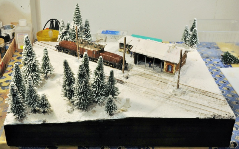 Diorama hivernale - locomotive Crocodile - 1/87 (HO) - Page 2 Dsc_1168