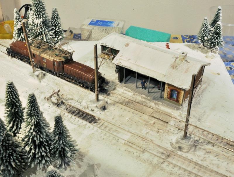 Diorama hivernale - locomotive Crocodile - 1/87 (HO) - Page 2 Dsc_1169