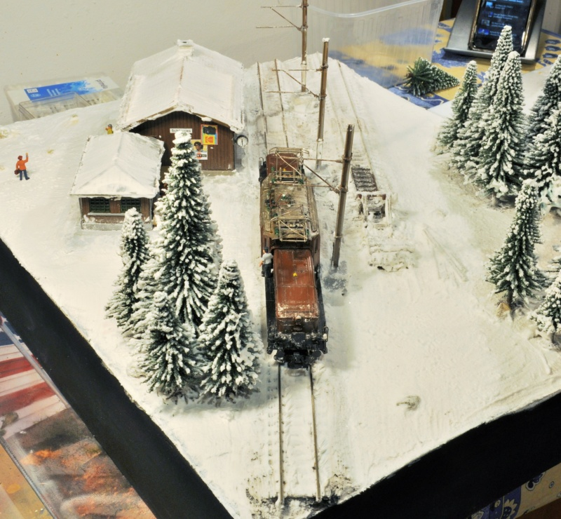 Diorama hivernale - locomotive Crocodile - 1/87 (HO) - Page 2 Dsc_1170