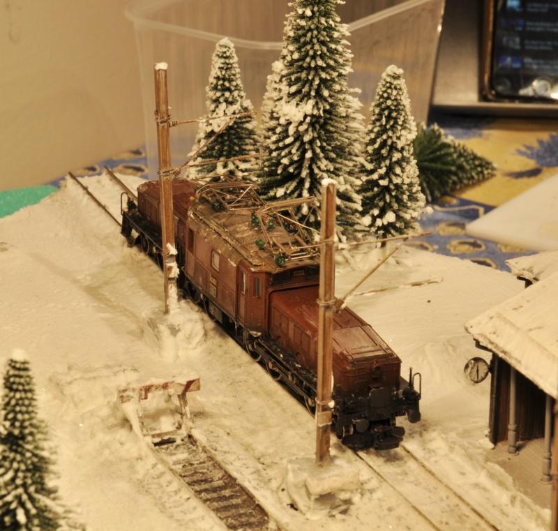 Diorama hivernale - locomotive Crocodile - 1/87 (HO) - Page 2 Dsc_1175