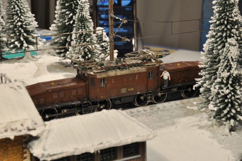 Diorama hivernale - locomotive Crocodile - 1/87 (HO) - Page 3 Dsc_1196