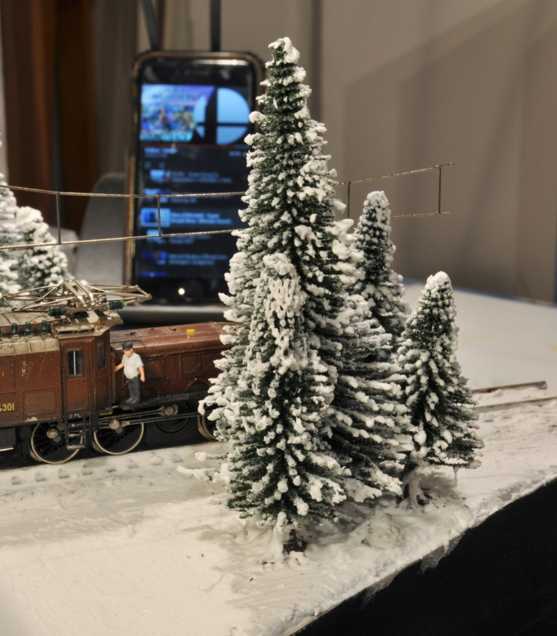 Diorama hivernale - locomotive Crocodile - 1/87 (HO) Dsc_1198