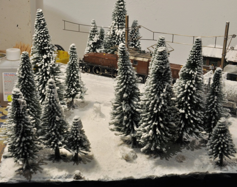 Diorama hivernale - locomotive Crocodile - 1/87 (HO) - Page 3 Dsc_1200