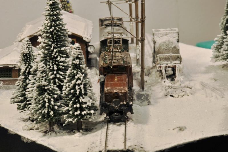 Diorama hivernale - locomotive Crocodile - 1/87 (HO) - Page 3 Dsc_1202