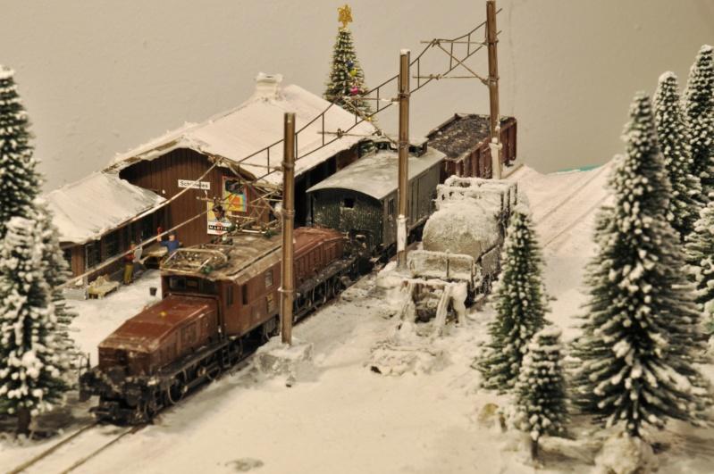 Diorama hivernale - locomotive Crocodile - 1/87 (HO) Dsc_1210