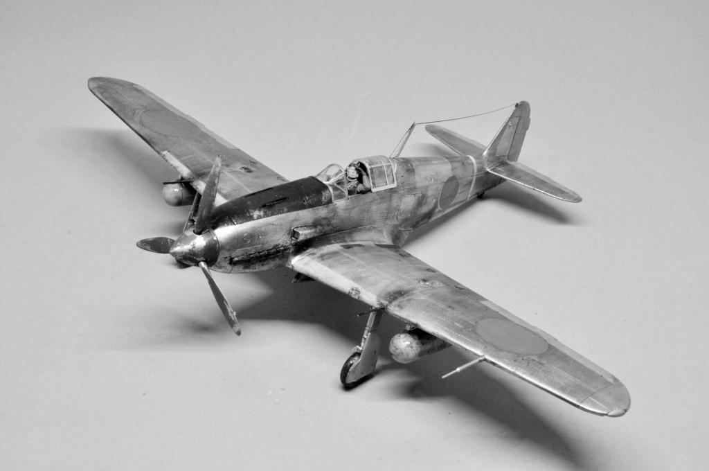 Kawasaki Ki-61-I Hei Hein (Tony) - 103e escadrille de chasse - Hasegawa - 1/48 Dsc_1297