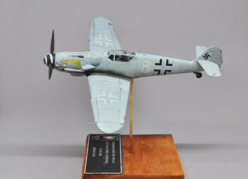 Messerschmitt Bf-109 G14 - Eduard - 1/48 Dsc_1416