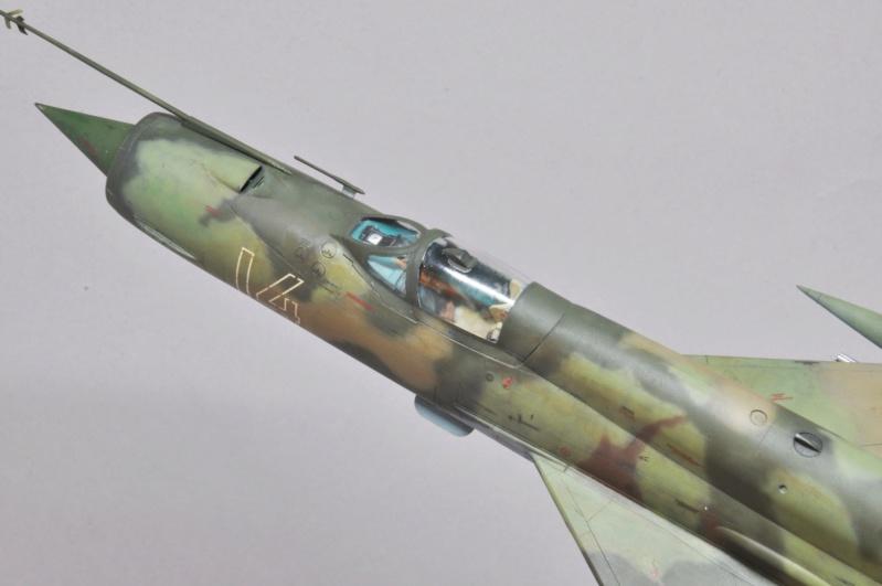 Mikoyan-Gourevitch MiG-21 MT/SMT - Eduard -1/48  Dsc_1499