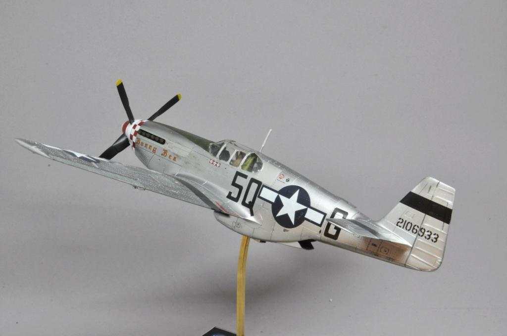 North American P-51 B Mustang - Tamiya - 1/48 Dsc_1601