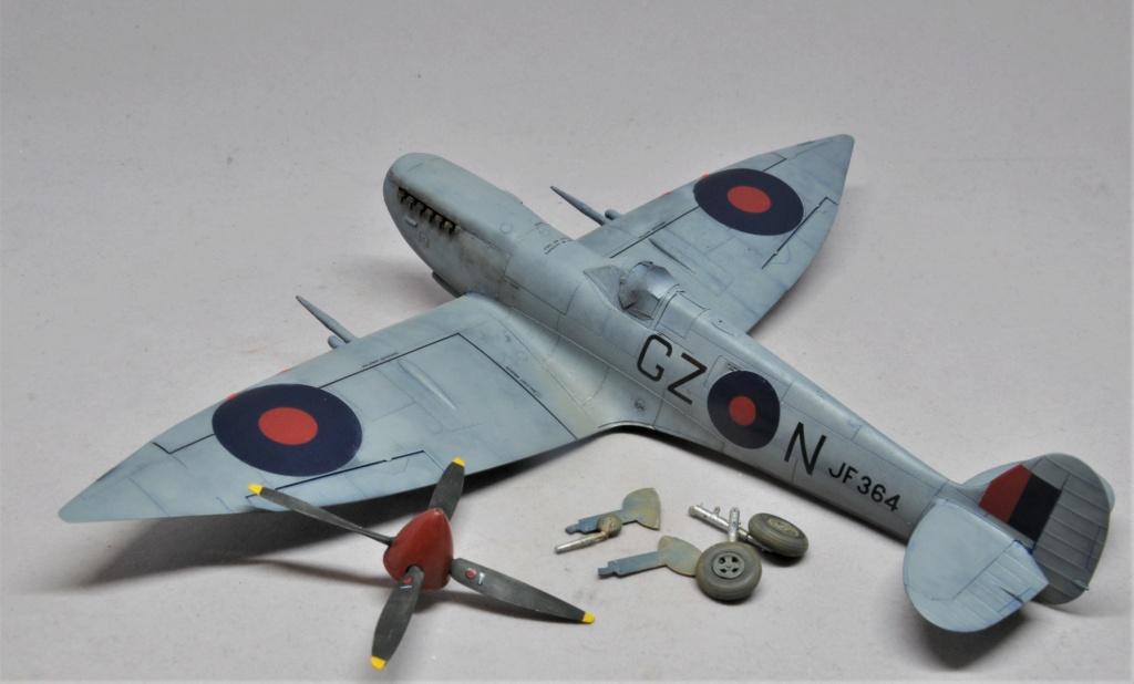 Supermarine Spitfire HF Mk VIII - Eduard - 1/48 Dsc_1976