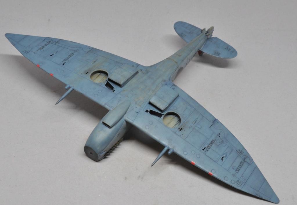 Supermarine Spitfire HF Mk VIII - Eduard - 1/48 Dsc_1977