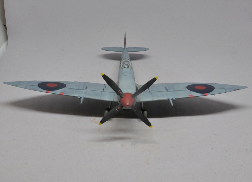 Supermarine Spitfire HF Mk VIII - Eduard - 1/48 Dsc_1979