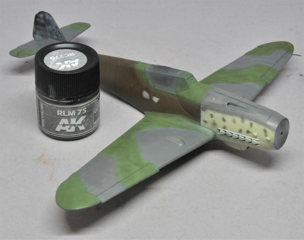 Messerschmitt Bf-109 G14/AS - JG27 - Eduard - 1/48 Dsc_2129