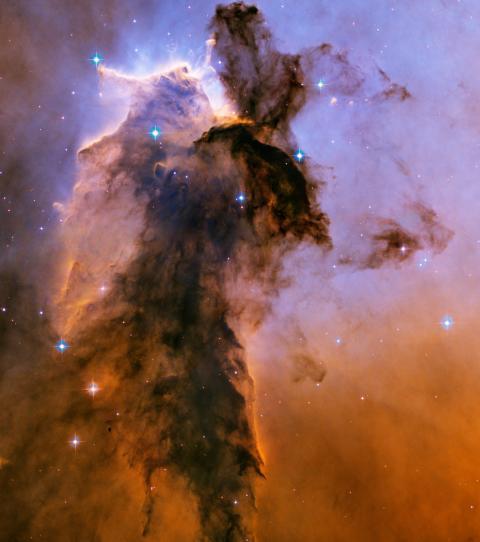 Navette spatiale Endeavour / Télescope Hubble - Hasegawa - 1/200 Voici-11
