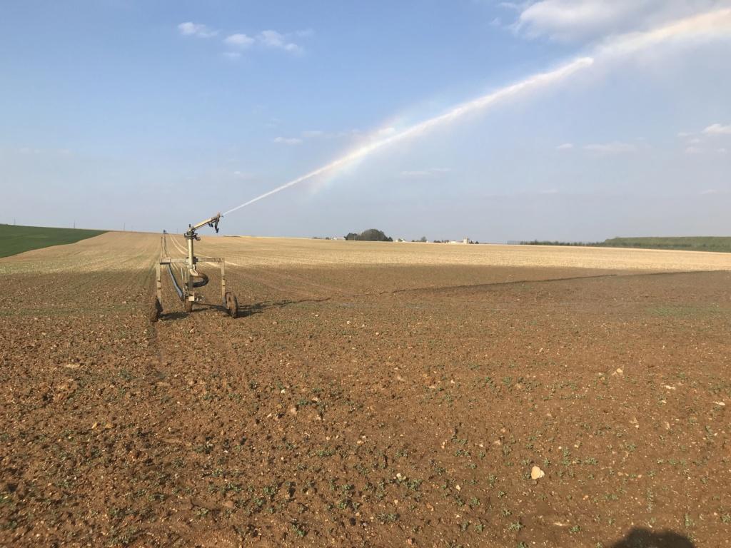 Irrigation 2020 26889110