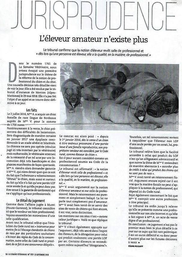 L'élevage de chiens est désormais réservé aux professionnels ... Image302