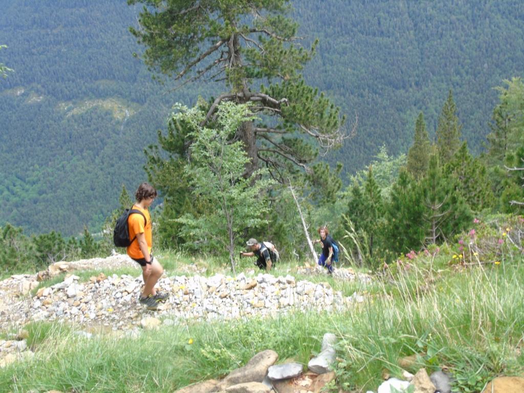 Topic:Deportes de Montaña..Escalada, Senderismo,Barranquismo....... Dsc01710