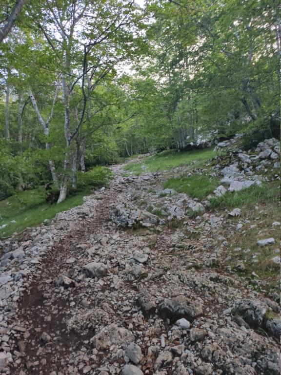 Topic:Deportes de Montaña..Escalada, Senderismo,Barranquismo....... - Página 11 Img_2029