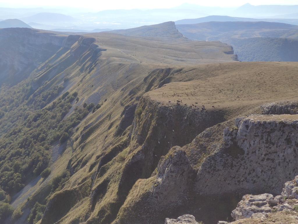 Topic:Deportes de Montaña..Escalada, Senderismo,Barranquismo....... - Página 11 Img_2048