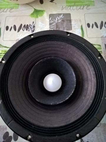 [SS+sped] Ciare PH250 - € 50 cad. Wp_20111
