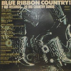 VA - Country Compilation Albums 1 Va_blu51