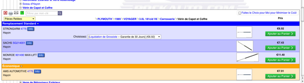 Ou acheter vérins de hayon pour Voyager S1 3LV6 Verins10