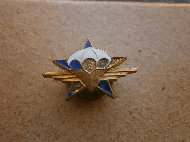 Rentrée d insignes Insign35