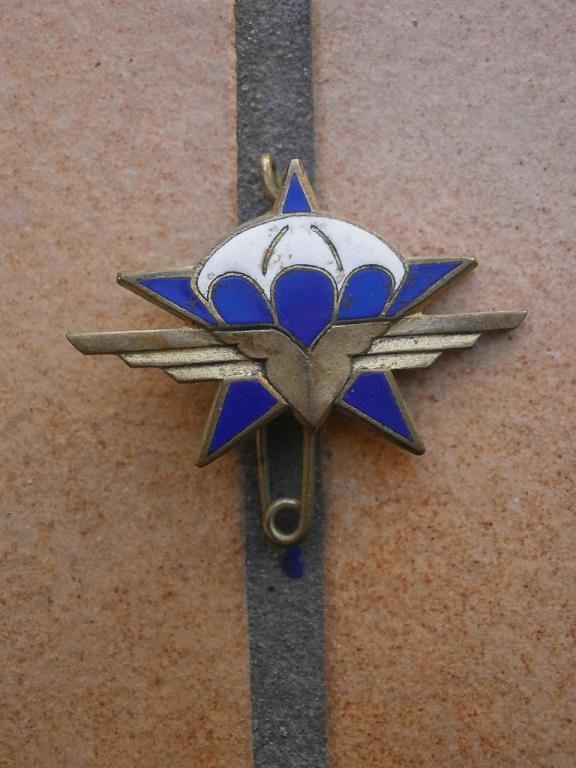 Rentrée d insignes Insign37