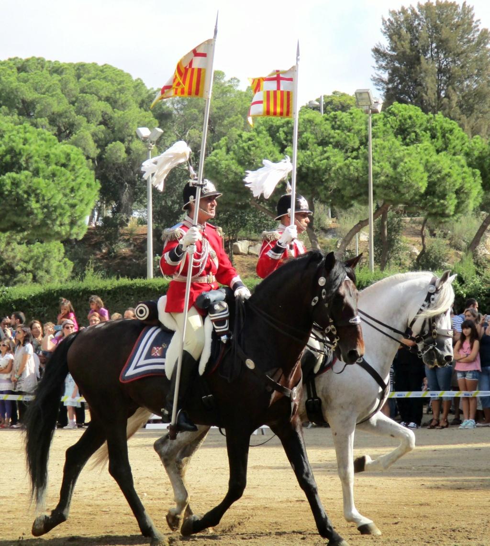 Sabres de la Garde Municipale de Barcelone. 68ab7910