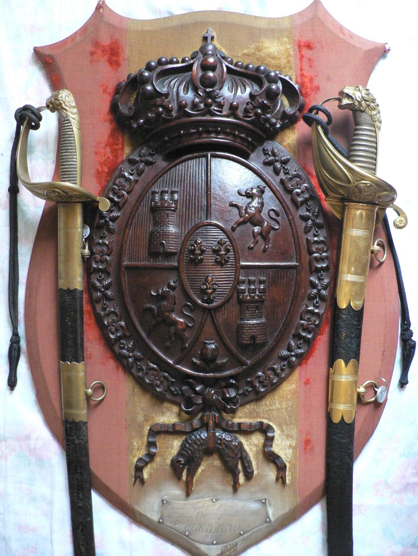 Un bouclier historique P1160510