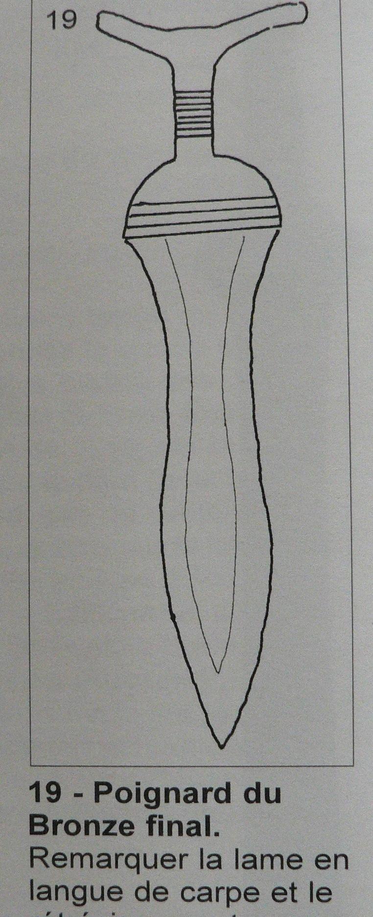 Langue de carpe? P1230131