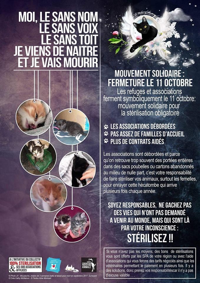 Mouvement solidaire pour la stérilisation obligatoire le 11 octobre. 43565310