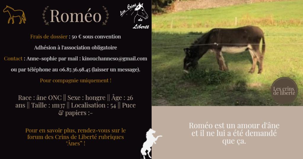 DPT 54 - ROMEO - Ane ONC- Contact Anne-sophie Fiche104