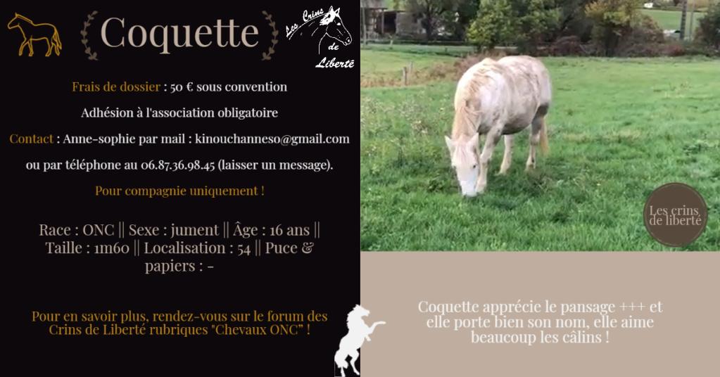 DPT 54 - 16 ans- COQUETTE - ONC selle - Contact Anne-sophie Fiche106