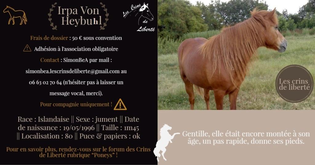 Dept 80 - IRPA VON HEYBUHL & UNE CLEOPATRE  - poneys - sauvées par Mickael  Fiche128