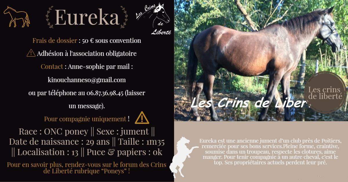 Dpt 13 - 29 ans - EUREKA - ONC poney- Contact Anne-sophie Fiche143