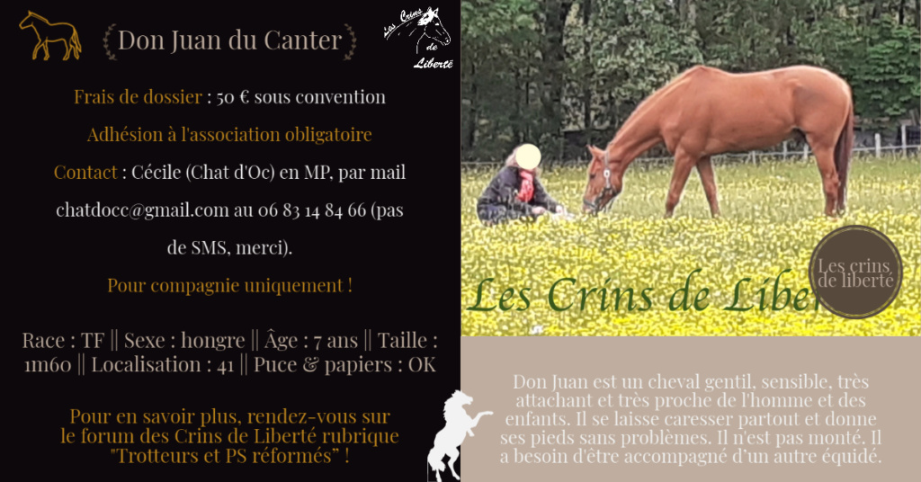 Dpt 41, 7 ans, Don Juan du Canter, hongre TF, contact Cécile Fiche157