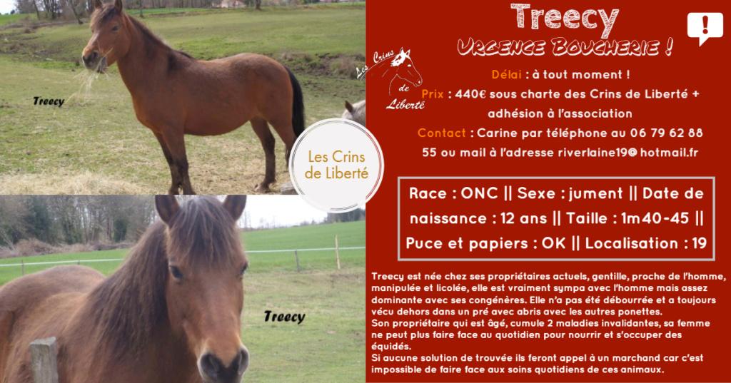 Dept19-12 ans-TREECY-ONC-sauvée par Perscillia89 !!! (nov 2019) Fiche172
