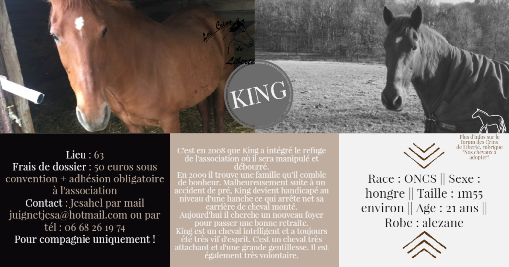 King ONCS Fiche_63