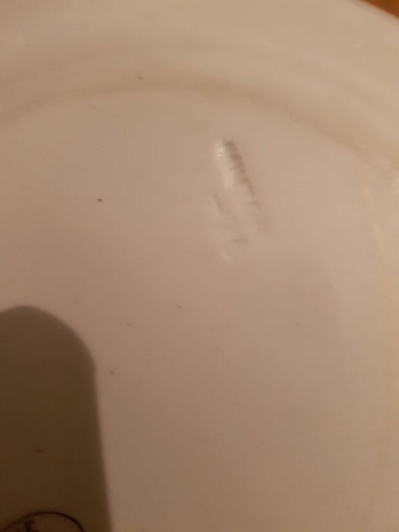 Minton but orginal? 20210412