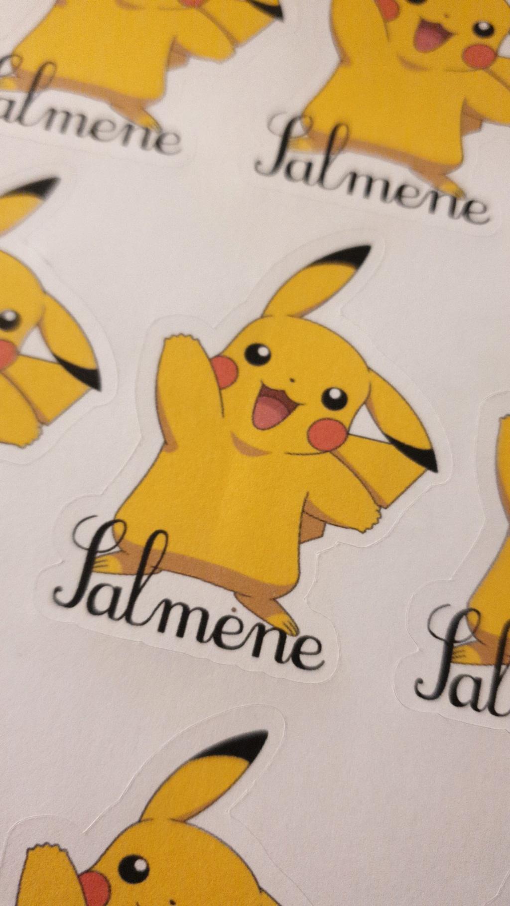 la cameo et les stickers Img-2010