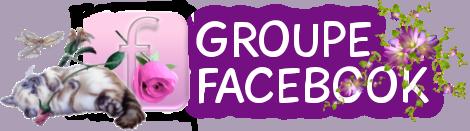 Tag facebook sur ©Féline Pub | Forum de pub, codage, graphisme, annuaire web  Groupe10