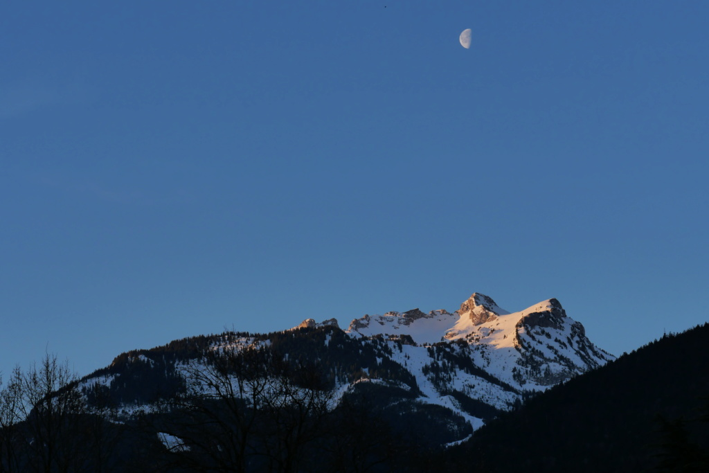Au clair de la lune ... P1034510