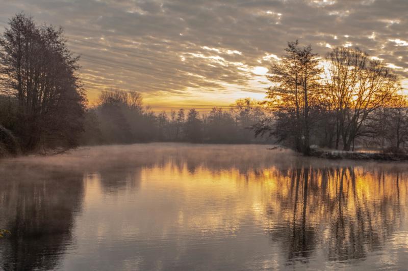 Les étangs se réveillent... Img_0110